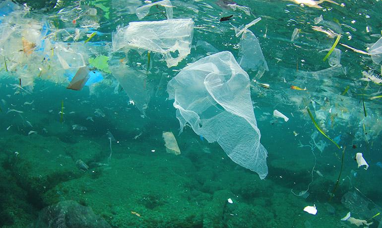海洋プラスチック問題のイメージ画像